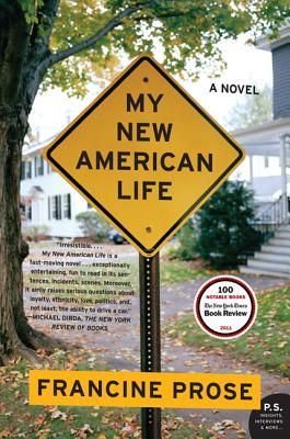 Image for MY NEW AMERICAN LIFE