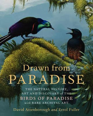 Image for Drawn From Paradise: The Discovery, Art and Natural History of the Birds of Paradise