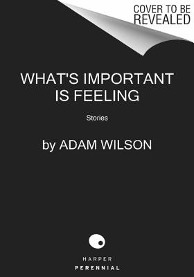 Image for WHAT'S IMPORTANT IS FEELING : STORIES