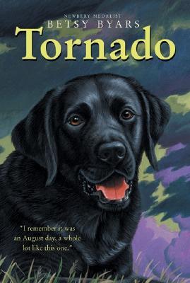 Image for Tornado (Trophy Chapter Book)