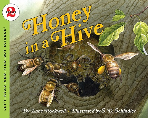 Image for HONEY IN A HIVE