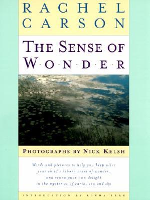 Image for Sense of Wonder