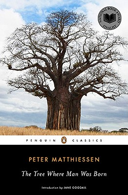 Image for Tree Where Man Was Born