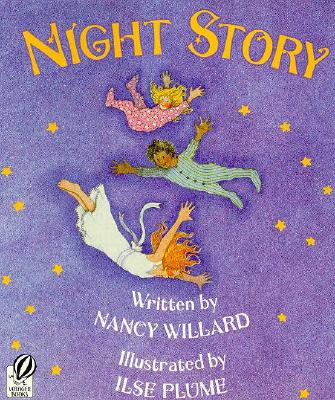 Image for Night Story