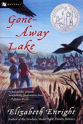 Image for Gone-Away Lake