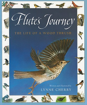 Image for Harcourt School Publishers Collections: Chapter Book Grade 4 Flute's Journey