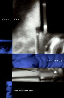Public Sex/Gay Space (Between Men-Between Women: Lesbian and Gay Studies)