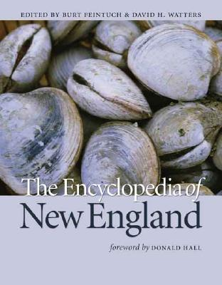 Image for The Encyclopedia of New England