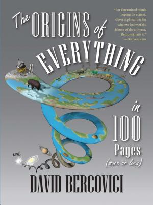 Image for Origins of Everything in 100 Pages (More or Less)