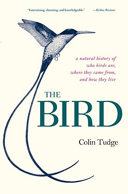 Image for The Bird: A Natural History of Who Birds Are, Where They Came From, and How They Live
