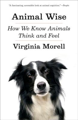 Image for Animal Wise: How We Know Animals Think and Feel