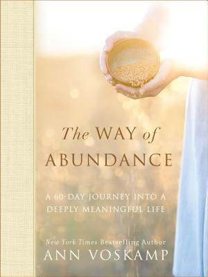 Image for The Way of Abundance: A 60-Day Journey into a Deeply Meaningful Life