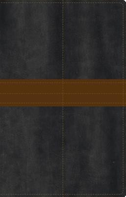 "Image for ""NIV Devotional Bible for Men--soft leather-look, charcoal/tan"""