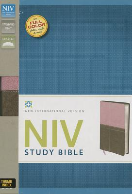 Image for NIV Study Bible Indexed (Berry Creme/Chocolate)
