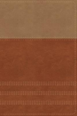 Image for NIV, Biblical Theology Study Bible, Leathersoft, Tan/Brown, Comfort Print: Follow God's Redemptive Plan as It Unfolds throughout Scripture