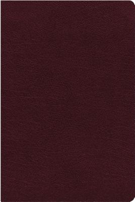 Image for NIV, Biblical Theology Study Bible, Bonded Leather, Burgundy, Comfort Print: Follow God's Redemptive Plan as It Unfolds throughout Scripture