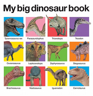 Image for My Big Dinosaur Book