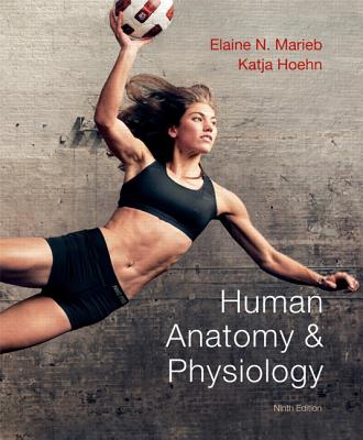 Image for Human Anatomy & Physiology   (Marieb, Human Anatomy & Physiology)