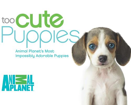 Image for Too Cute Puppies: Animal Planet's Most Impossibly Adorable Puppies