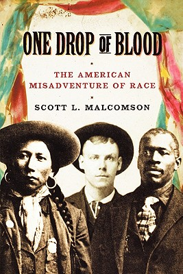 Image for One Drop of Blood: The American Misadventure of Race