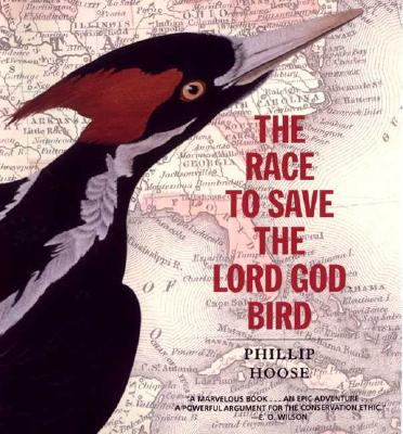 Image for Race to Save the Lord God Bird