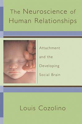 Image for The Neuroscience of Human Relationships: Attachment And the Developing Social Brain (Norton Series on Interpersonal Neurobiology)