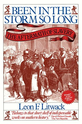 Image for Been in the Storm So Long: The Aftermath of Slavery