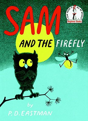Image for Sam and the Firefly