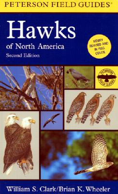 Field Guide To Hawks Of North America, A, Clark, William S.