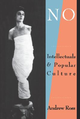 Image for No Respect: Intellectuals and Popular Culture