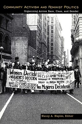 Community Activism and Feminist Politics: Organizing Across Race, Class, and Gender (Perspectives on Gender)