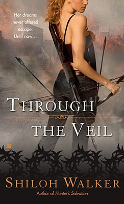 Image for Through the Veil (A Veil Novel)