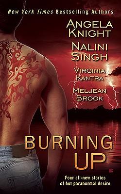 Burning Up, Angela Knight, Nalini Singh, Virginia Kantra, Meljean Brook