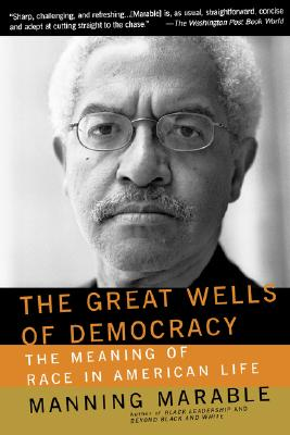 Image for The Great Wells Of Democracy: The Meaning Of Race In American Life