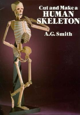 Image for Cut and Make a Human Skeleton (Dover Children's Activity Books)