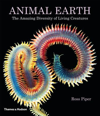 Image for Animal Earth: The Amazing Diversity of Living Creatures
