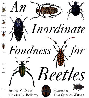 Image for Inordinate Fondness for Beetles, An