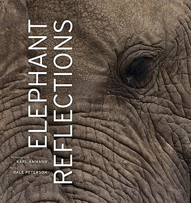 Image for Elephant Reflections