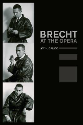 Image for Brecht at the Opera