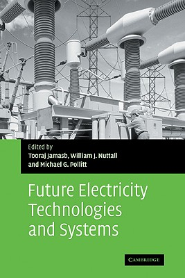 Future Electricity Technologies and Systems (Department of Applied Economics Occasional Papers)