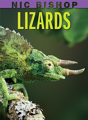 Image for Nic Bishop Lizards