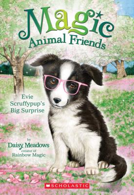 Evie Scruffypup's Surprise (Magic Animal Friends #10), Daisy Meadows