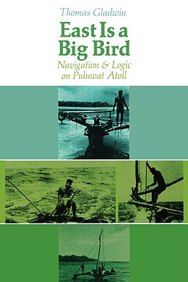 Image for East Is a Big Bird: Navigation and Logic on Puluwat Atoll