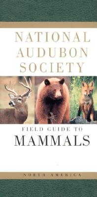 Image for Field Guide to Mammals