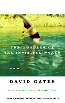 The Wonders of the Invisible World (Vintage Contemporaries), Gates, David