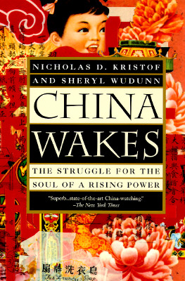 Image for China Wakes: The Struggle for the Soul of a Rising Power