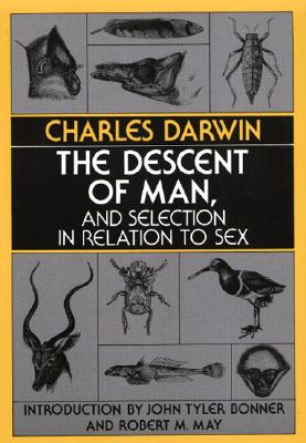 Image for Descent of Man, and Selection in Relation to Sex