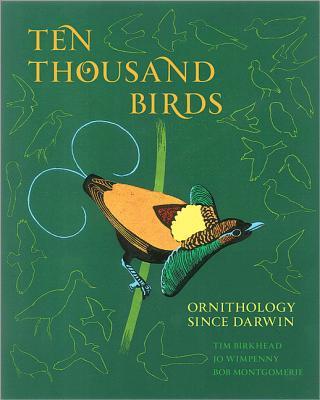 Image for Ten Thousand Birds: Ornithology since Darwin