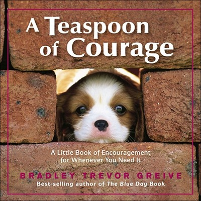 Image for A Teaspoon of Courage: A Little Book of Encouragement for Whenever You Need It