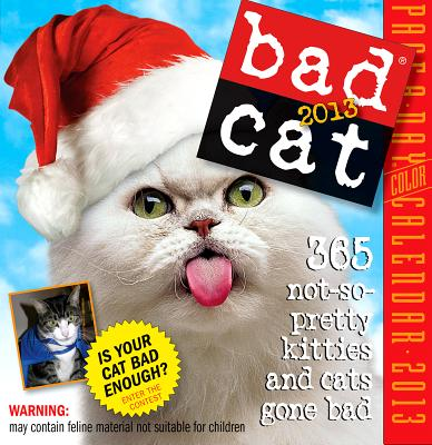 Bad Cat: 244 Not-So-Pretty Kitties And Cats Gone B, Edgar, Jim